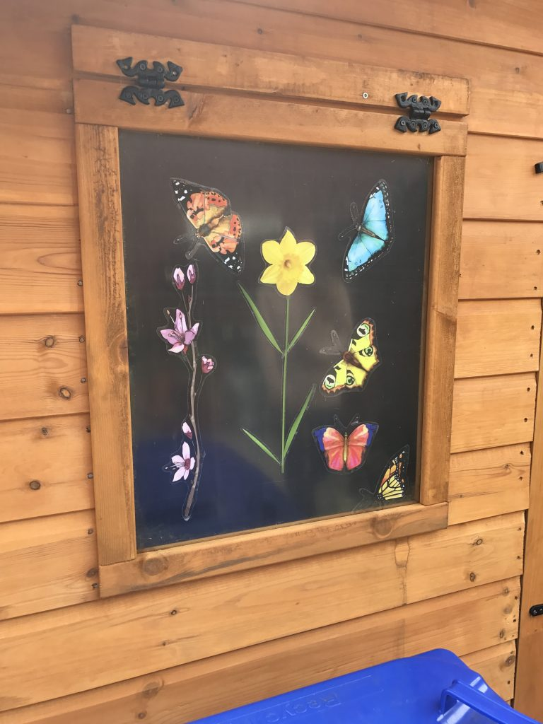 image of butterfly shed